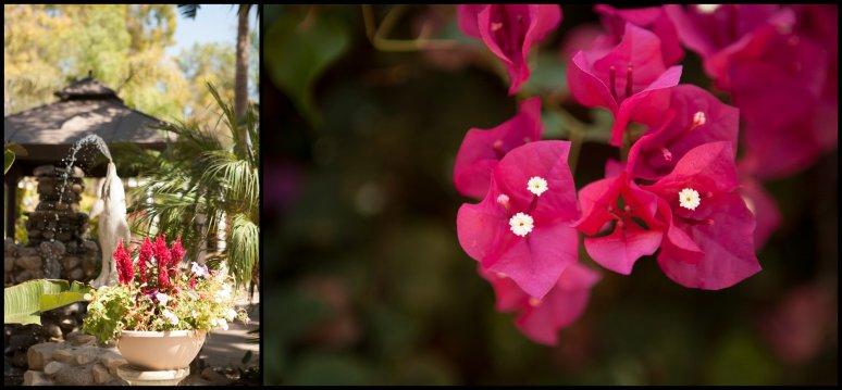 cassia-karin-photography-clegg-wedding-rancho-de-las-palmos100.jpg