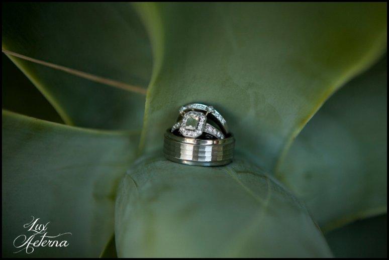 cassia-karin-photography-clegg-wedding-rancho-de-las-palmos123.jpg