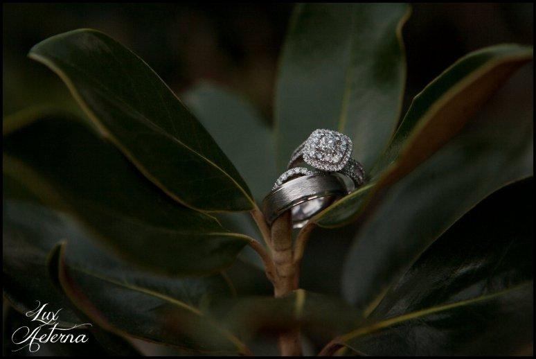 Lux-aeterna-photography-catholic-big-wedding-bakersfield-california-dress-flowers-wedding-kids0104