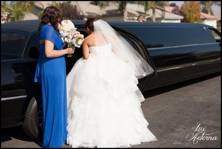 Lux-aeterna-photography-catholic-big-wedding-bakersfield-california-dress-flowers-wedding-kids0125
