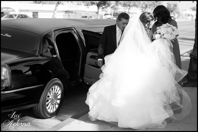 Lux-aeterna-photography-catholic-big-wedding-bakersfield-california-dress-flowers-wedding-kids0129