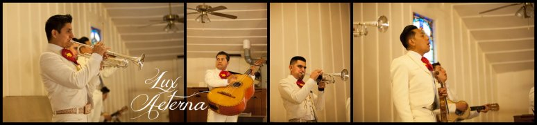 Lux-aeterna-photography-catholic-big-wedding-bakersfield-california-dress-flowers-wedding-kids0134