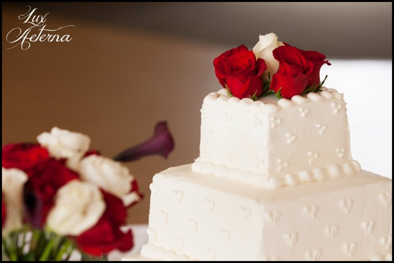 canyon-lake-country-club-wedding-clouds-groom-bride-lake-boat-boey-dock-roses-cassia-karin-lux-aeterna-photography069.jpg