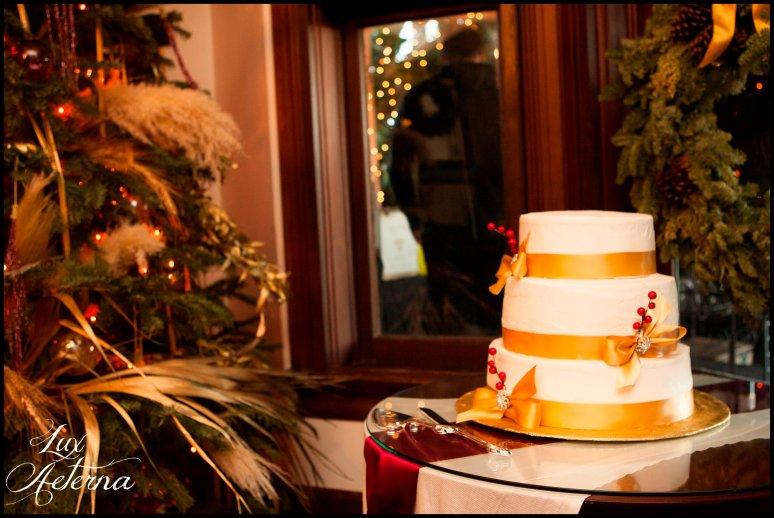 cassia-karin-photograph-christmas-house-rancho-cucamnga-california-wedding-family-152.jpg